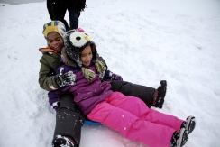 oe double sled